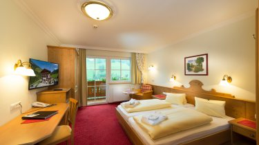 "Double room ""Mountain view"""